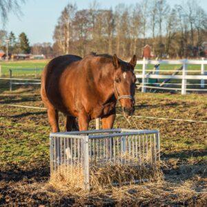 Foderbox för häst