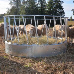 Foderhäck för får, 24 platser